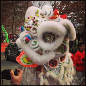 Chinese New Year_Lion